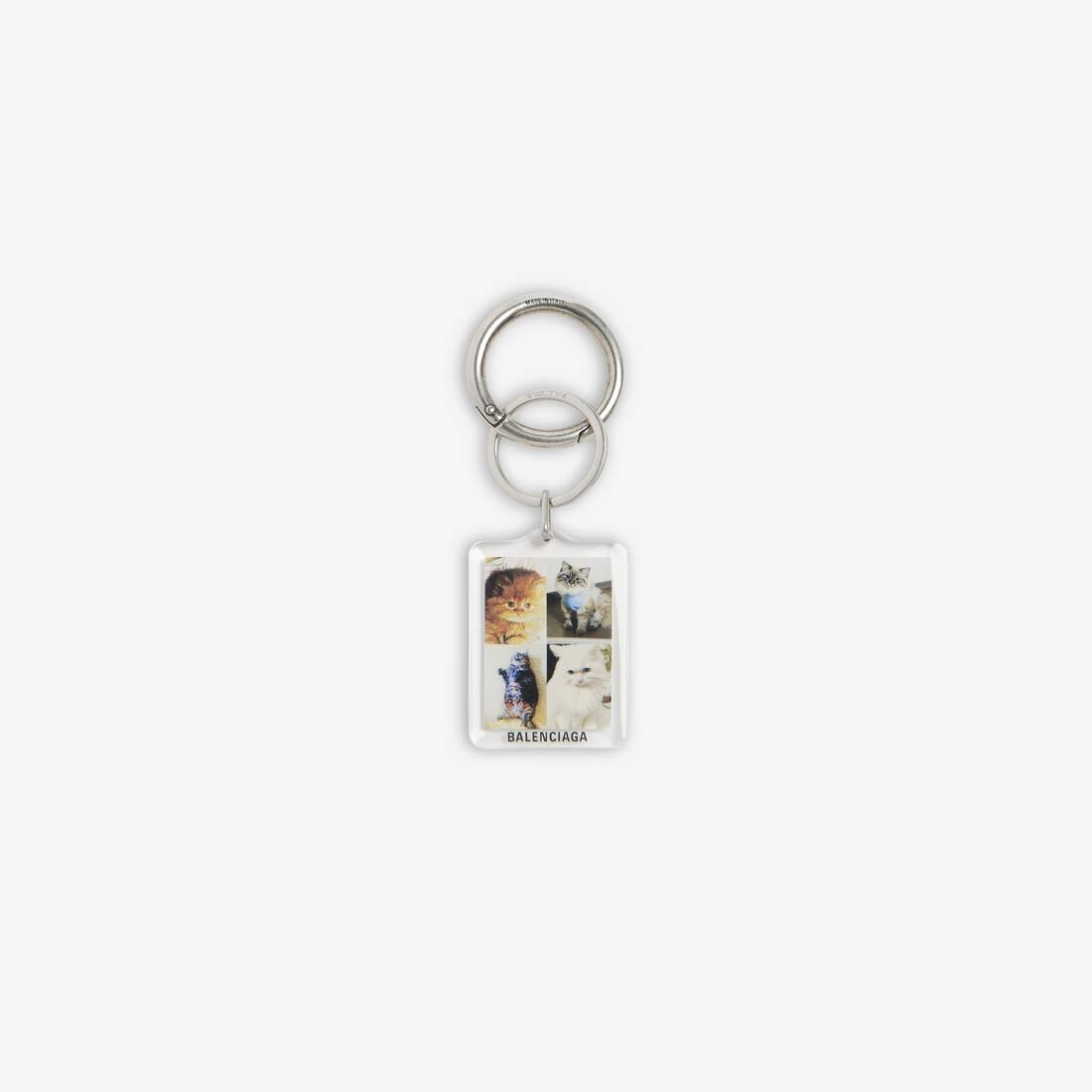 Display zoomed version of pets cat keyring 1