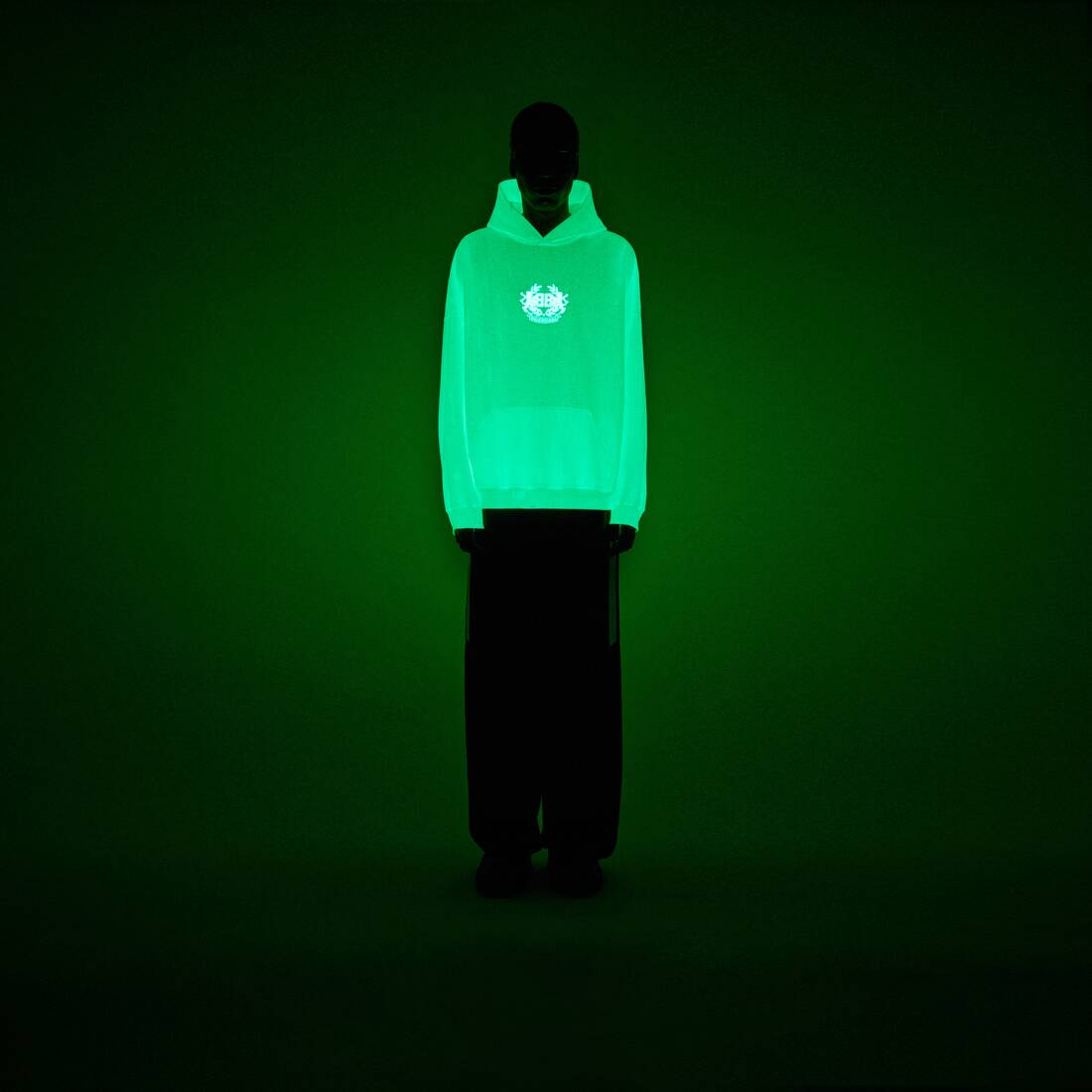 Display zoomed version of gitd lion's laurel hoodie 6