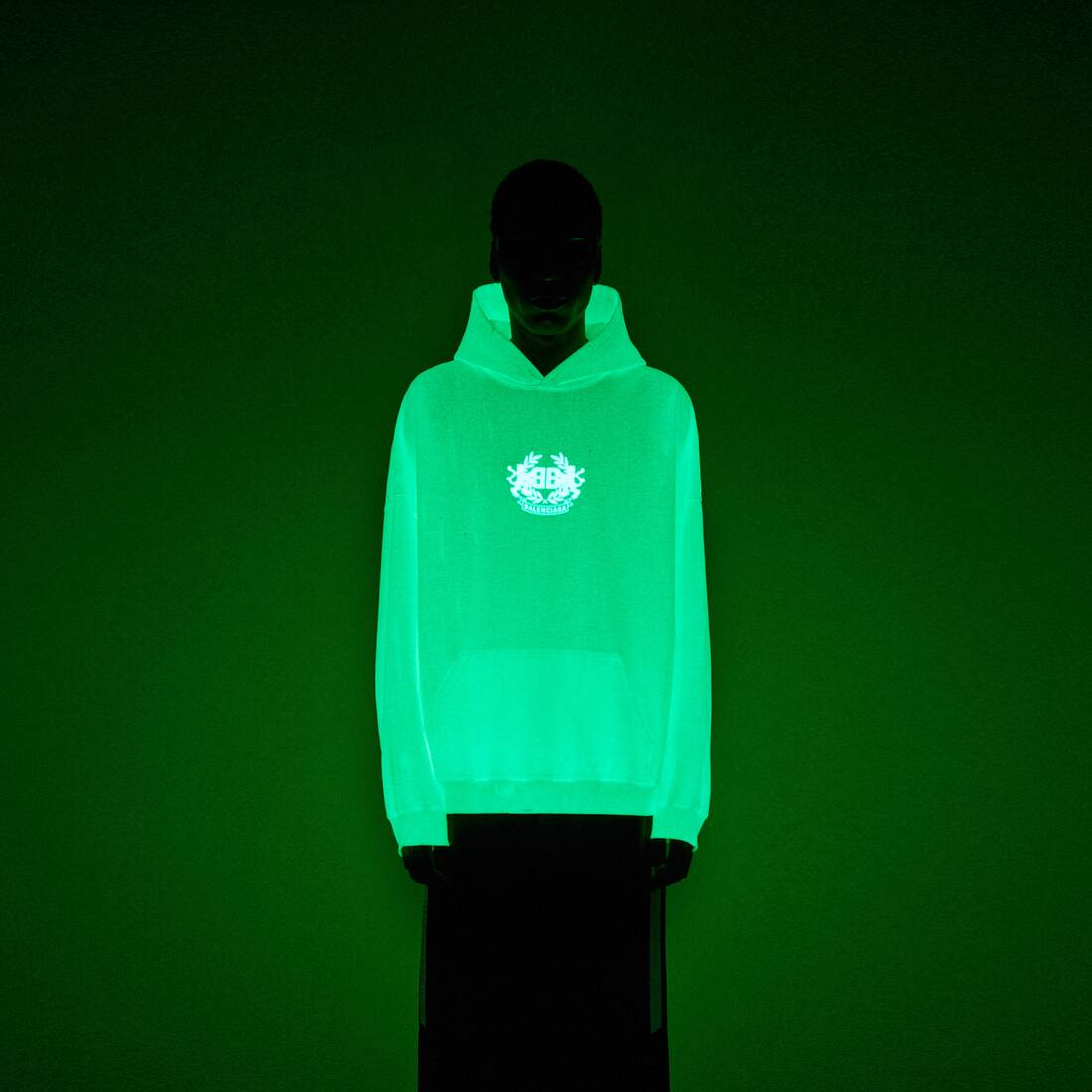 Display zoomed version of gitd lion's laurel hoodie 3