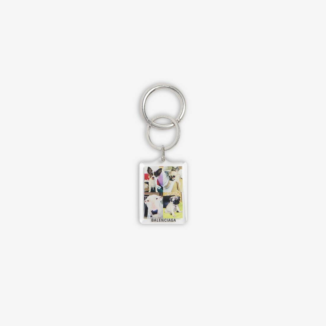 Display zoomed version of pets dog keyring 1